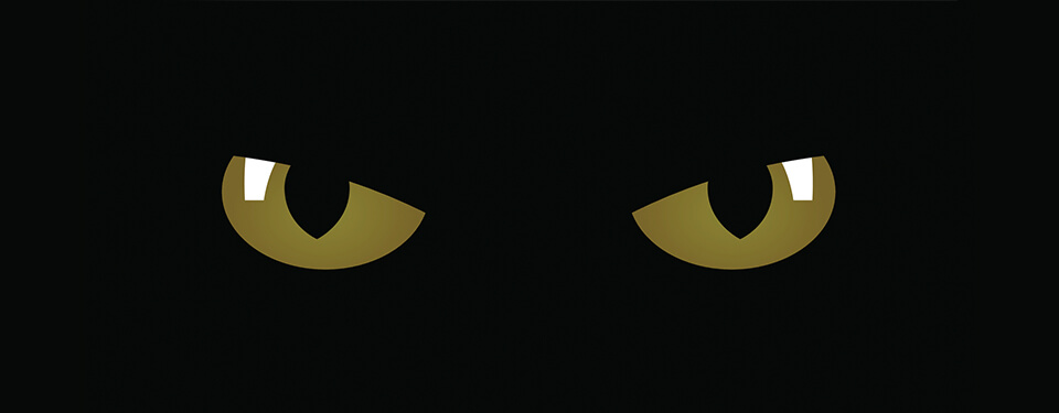 iglobal-eyes